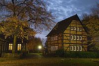 Menübild für Münster für Nachtschwärmer